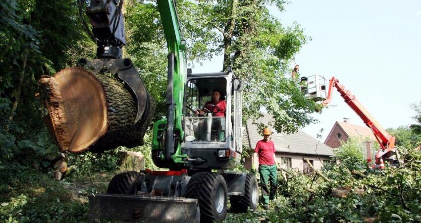 Braukmann Baumpflege mit Baggergreifer