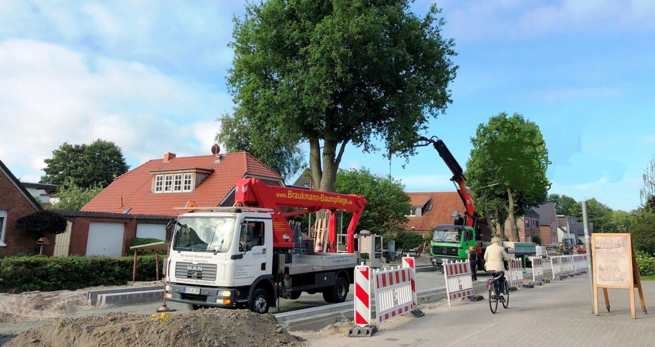 Baumarbeiten mit Kran und Hebebühne WT