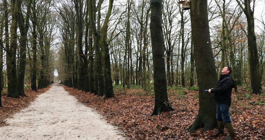 Baumkontrollen, Baummanagement und Baumkataster werden von unserem Fachagrarwirt für Baumpflege Jens Braukmann durchgeführt