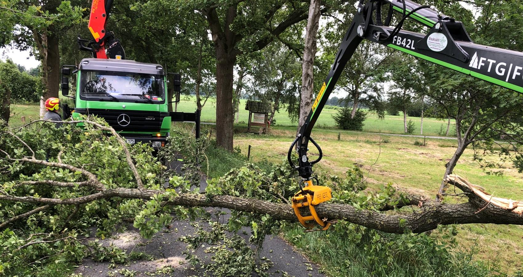 Baumpflege-Braumann-Sturmschäden auf der strasse werden mit unserem Kran schnell beseitigt