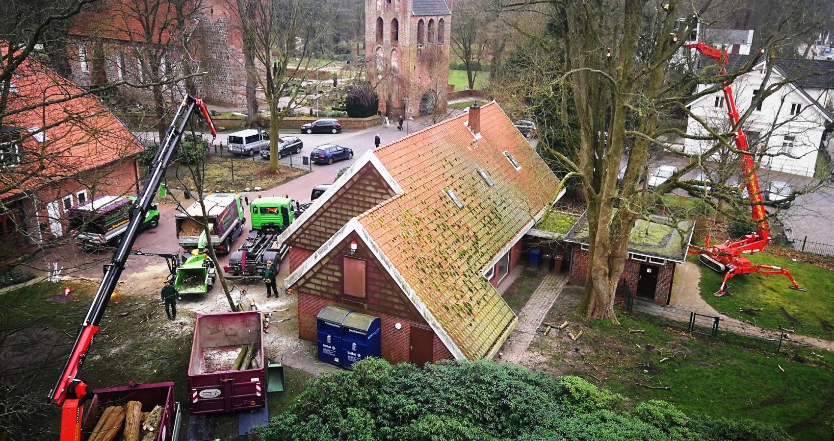 Baumpflege an der Rasteder Kirche Braukman-Team