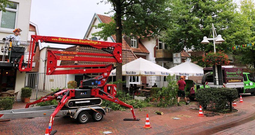 Unser Baumpflege- Team macht Ihre Bäume und Ihre Grünanlage sicher