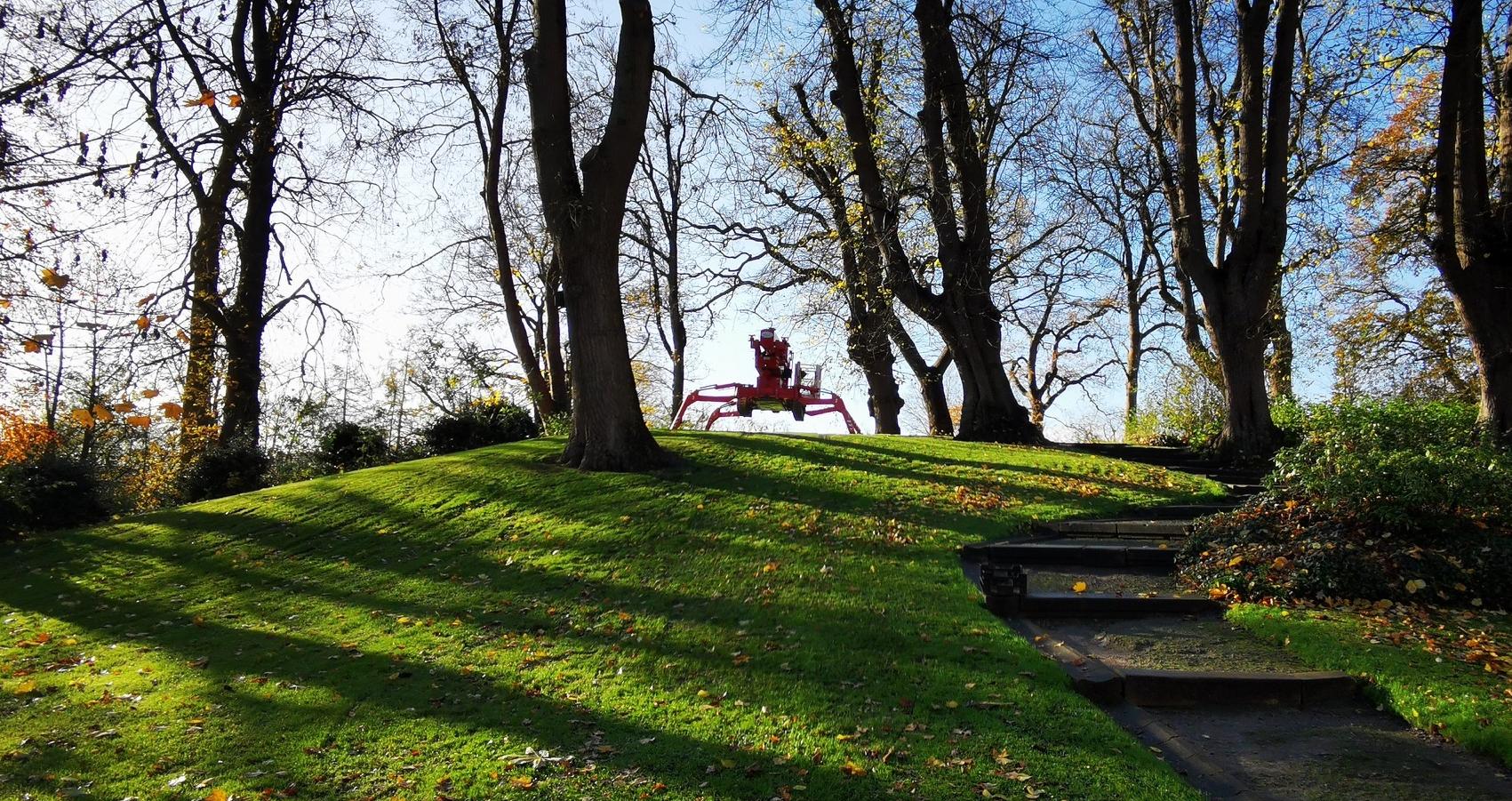 Baumpflege mit der variablen Hebebühne auf dem Hügel am Schloss Jeve